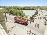 cordoba hop on hop off sightseeing bus tour