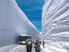 Snow Wall at Tateyama's Snow Corridor