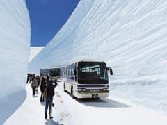 游走雪壁大谷白川乡