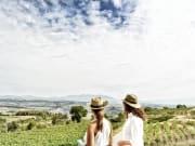 Llopart Visitants Montserrat
