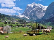 grindelwald, switzerland, cogwheel train, alps