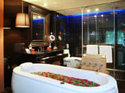 Alisa Premier Cruise- Jacuzzi Bathroom in Alisa Suite Cabin