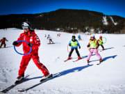 Bodmi Arena, Grindelwald, ski, switzerland