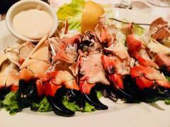 Stone_Crab_Main