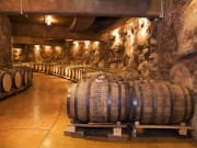 Barolo wine cellar