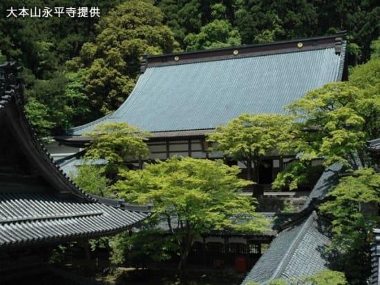 5永平寺(夏)1