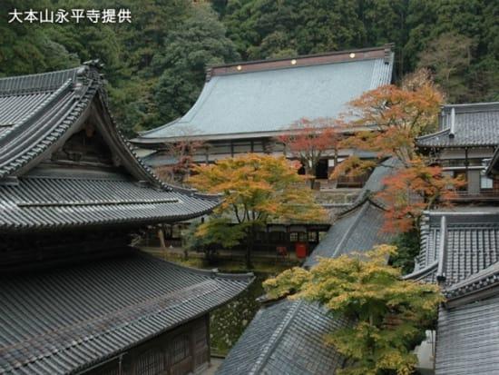 8永平寺(秋)2