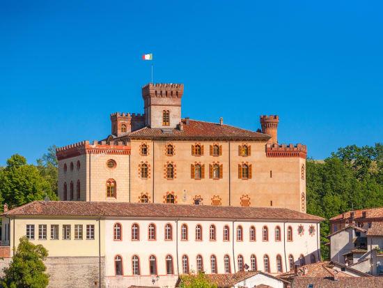 Falletti Castle / Castello di Barolo