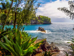 Hawaii_Big Island_Hilo Coast_shutterstock_390098683