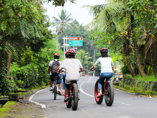 swing_ubud_cycling-2