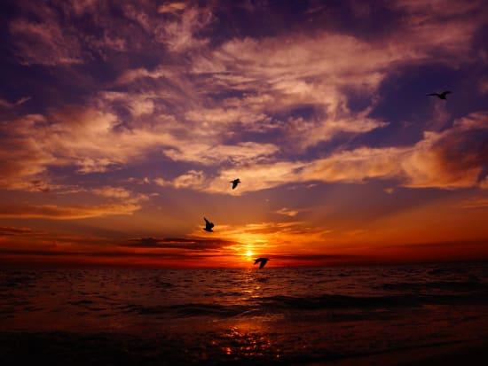 DOA Sunset(2)