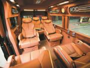 alisa_limousin
