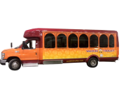 New_Mini_Bus_(2)