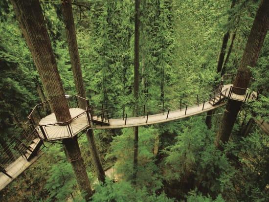 Mountain_Discovery___Peak_&_Canyon_Tours___Vancouver_Delights_-_Capilano_Suspension_Bridge_Park_Treetops