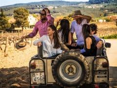 penedes, wine, spain, winery, vineyard