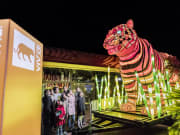 tiger with pink lights display in vivid sydney