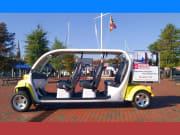 eCruiser Vehicle