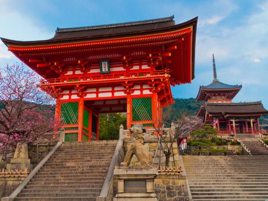 "Image result for Yasaka shrine"""