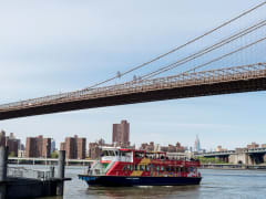 New-York-Ferry-04_preview (1)
