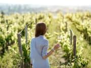 naples wine tour