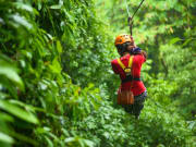 chiangmai bike and zipline tour