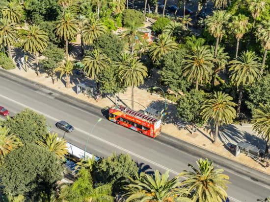Malaga-Bus-10_P_230_3c810372-41bf-41d1-abae-ca5093a50323