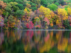 USA_New York_Bear mountain_Hudson River_Autumn