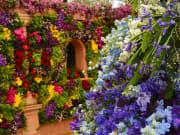 UK-England-London-Chelsea Flower Show_shutterstock_694418101