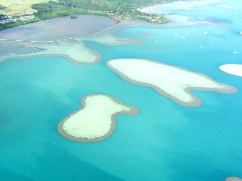 Kaneohe Bay Sandbar Top Rated Attractions Oahu Tours Activities