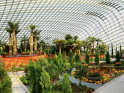 9615_Singapore_Gardens_by_the_Bay_Private_Tour