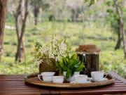 Araksa Tea Plantation Assam Tea