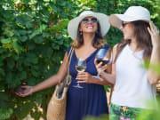 Wine Tasting_Along_Vineyard_Women