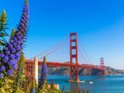 usa_san-francisco_golden-gate_shutterstock_171878780_rsz