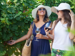 USA_Napa and Sonoma Valley_Wine tasting tour