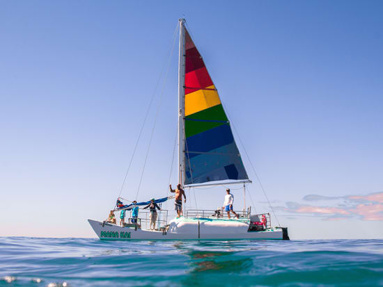 Mana Kai Catamaran Morning Afternoon Tradewind Sails From Waikiki Beach Instant Confirmation