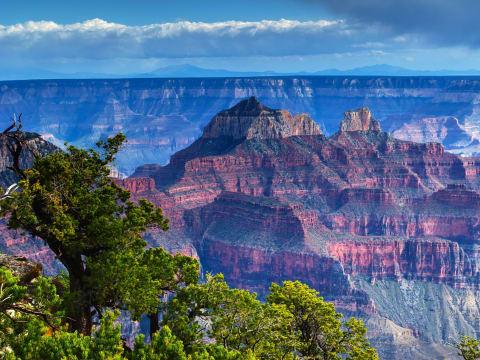 Grand Canyon North Rim Grand Canyon Tours Las Vegas Tours