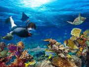 generic_snorkeling_shutterstock_578919403_rsz
