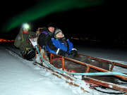 Night Sledding with Huskies 3