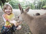 Wildlife Habitat_Kangaroo Feeding1_rsz
