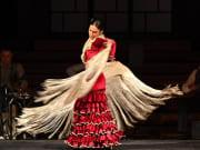 02-opera-y-flamenco