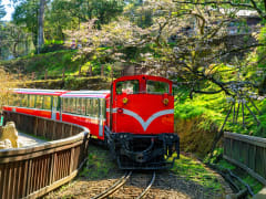 red train alishan forest railway experience taiwan