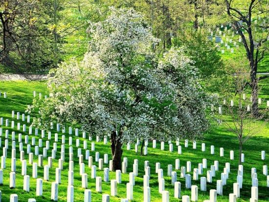 USA_Washington-DC_Arlington-National-Cemetery_123RF_19452494_ML