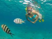 USA_Hawaii_Molokini-Snorkel_shutterstock_699388009