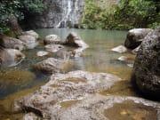 USA_Hawaii_Forest_Hike_shutterstock_895495
