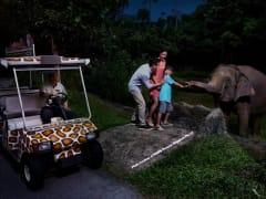 Singapore Night Safari tram ride