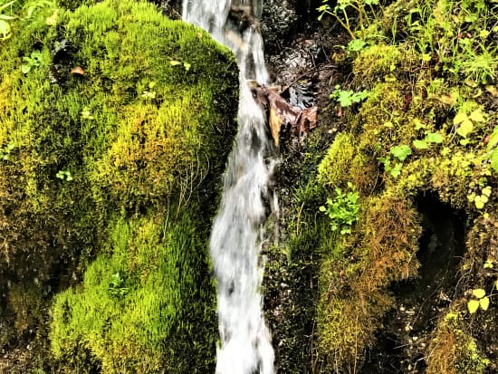 幻の湧き水