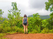 USA_Hawaii_Rainforest_Hike_shutterstock_1013108053