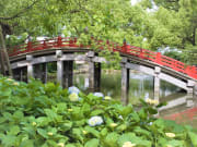 画像提供:福岡市