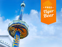 TigerBeer_ribbon