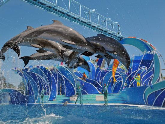 SeaWorld San Diego Tickets & Transportation, Los Angeles ...